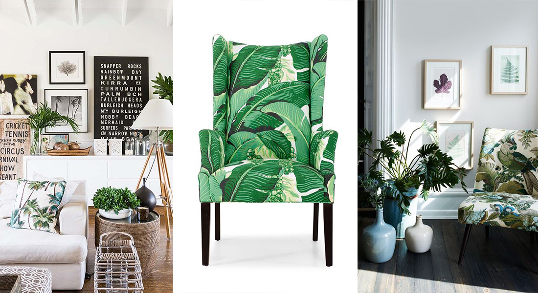 Bring the tropics into your home